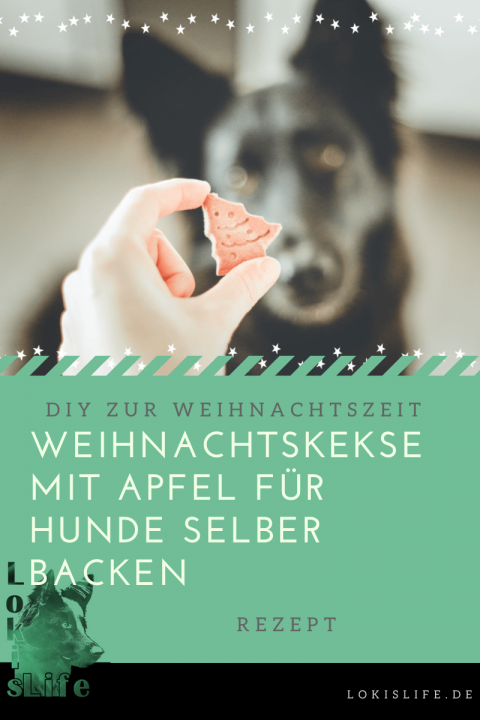 Hundekeks-Rezept: Leckere Weihnachtskekse für Hunde zum selber Backen