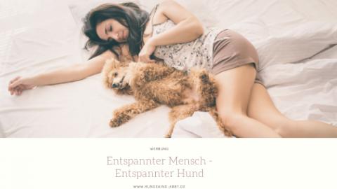 ENTSPANNTER MENSCH – ENTSPANNTER HUND || WERBUNG