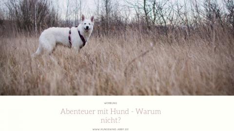 MIT DEM HUND AUF ABENTEUERREISE || WERBUNG