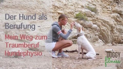 Aus dem Nähkästchen geplaudert – mein Weg zur Hundephysio