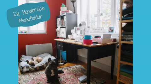 Der Hund als Berufung! Oder: Wie ich meine Leidenschaft zum Nähen entdeckt habe?