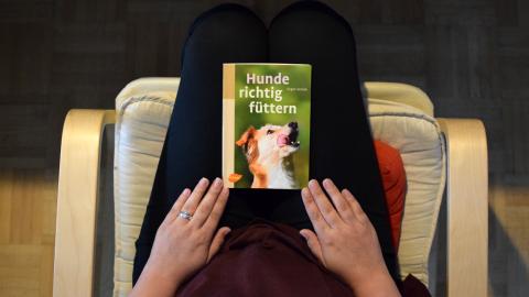HUNDE RICHTIG FÜTTERN VON JÜRGEN ZENTEK [WERBUNG]