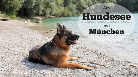 Am Hundesee bei München