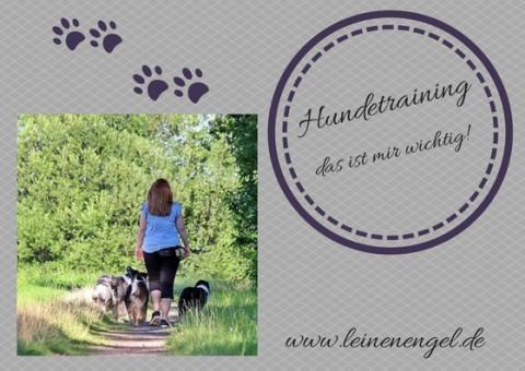 Hundetraining – das ist mir wichtig!