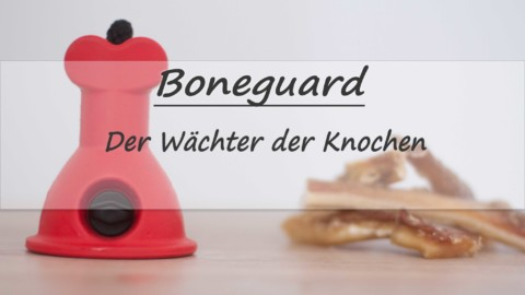 Boneguard – der Wächter der Knochen
