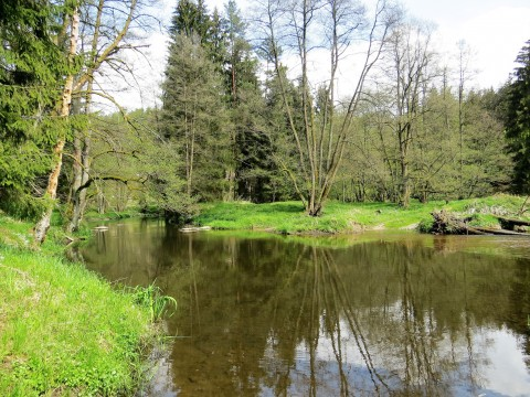 Waldnaabtal-Runde