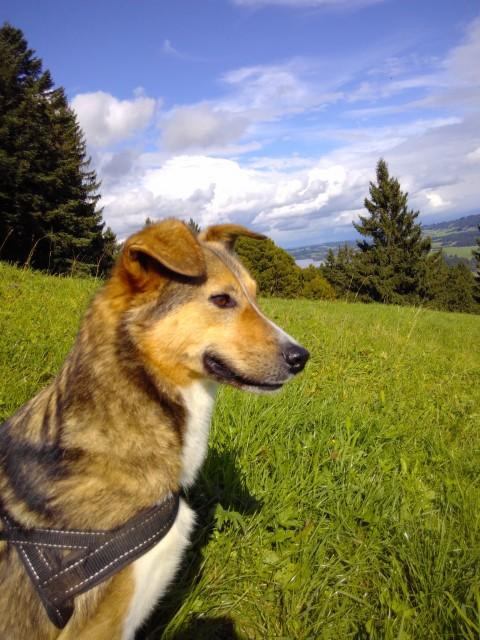 September: Zwischen Alpen und Hadronen