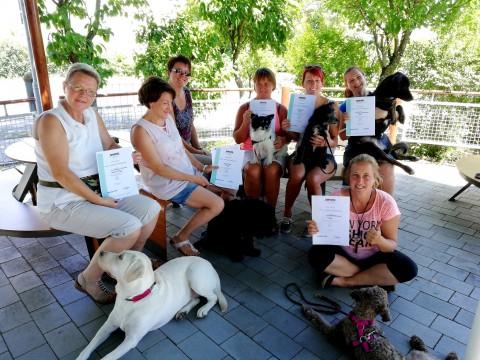 Die Hundeführerscheinprüfung