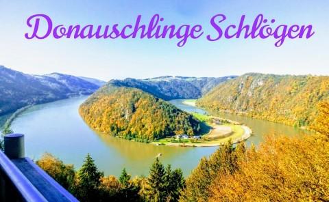 """Herbstliche Wanderung zum """"Schlögener Blick"""" – Wandern mit Hund in Oberösterreich"""