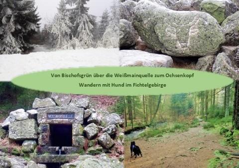 Von Bischofsgrün über die Weißmainquelle auf den Ochsenkopf – Wandern mit Hund im Fichtelgebirge