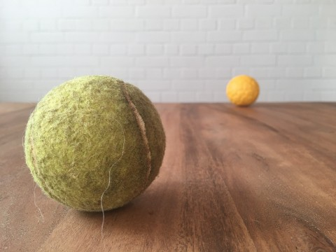 Tennisbälle für Hunde // ein gefährliches Spielzeug