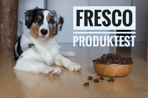 Produkttest FRESCO