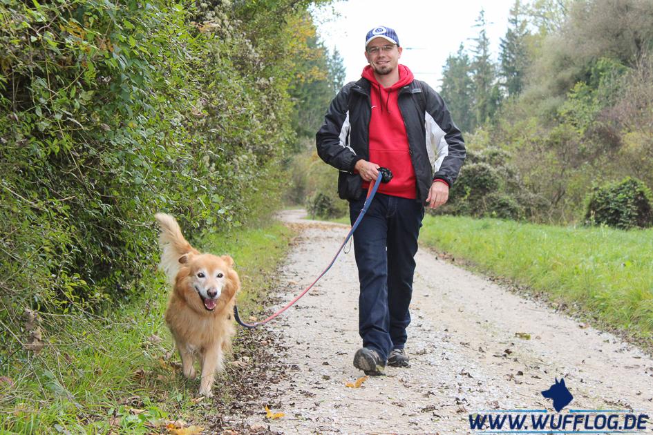 Hundetrainer Ausbildung Erfahrungen