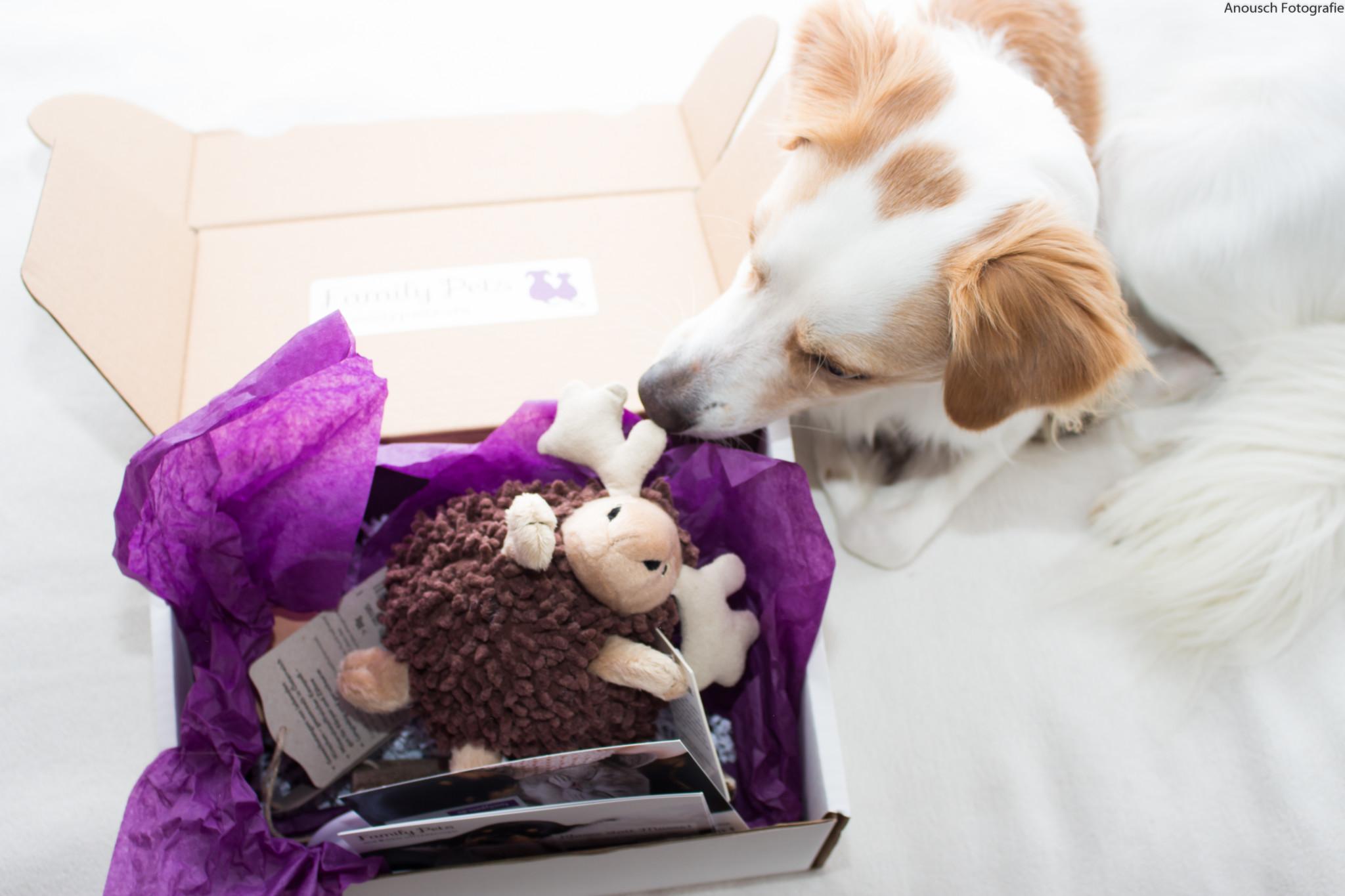 Weihnachtsgeschenk Hund Family Pets