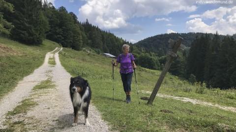 Tolle Wanderung an der Vorderen Schwarzachen zur Bichleralm und Hiental-Klause