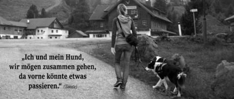 Bilder Lieder Hund