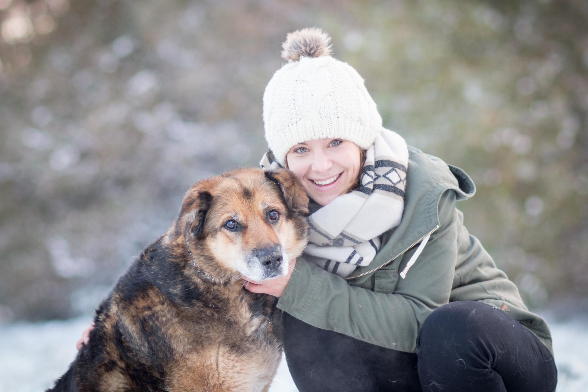 Fotoshootings Hunde Tiere