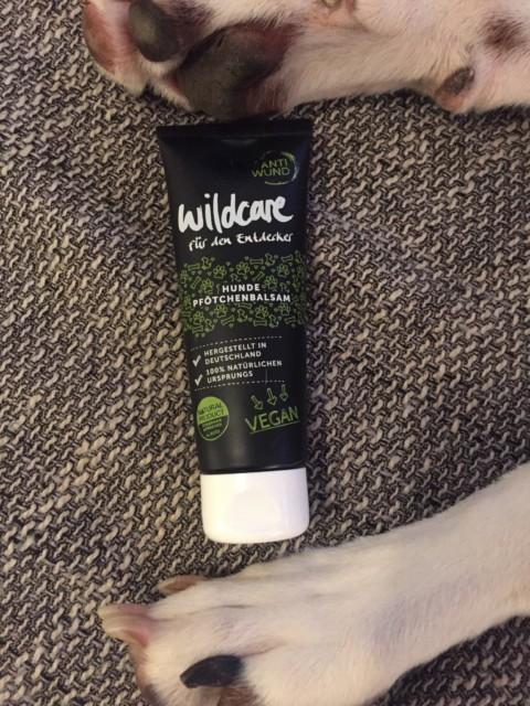 Produkttest-Wildcare Pfötchenpflege