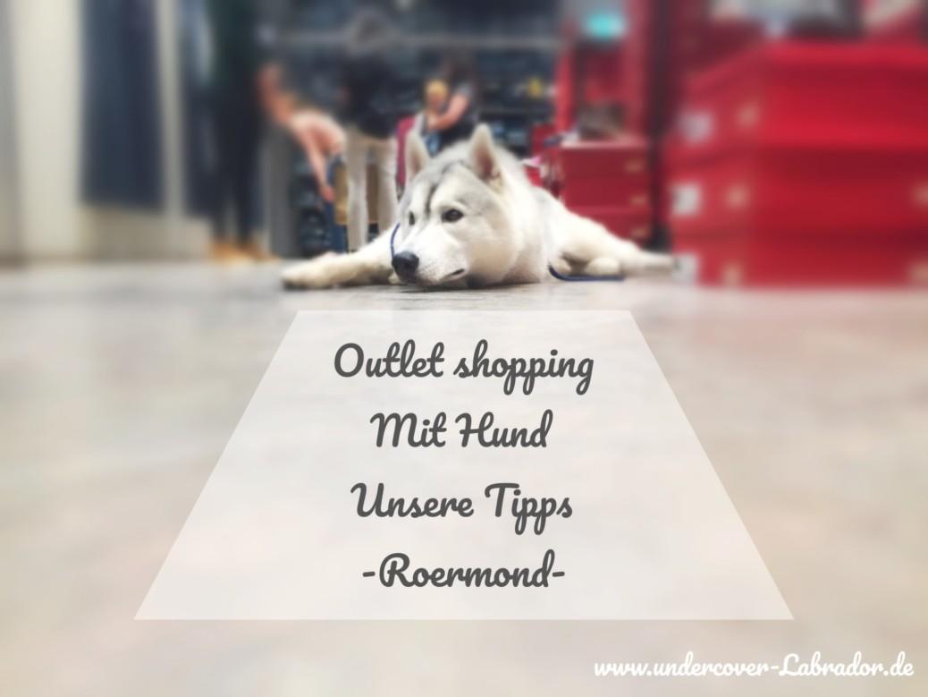 Shopping mit Hund