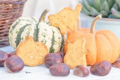 Tierische Halloween-Kekse