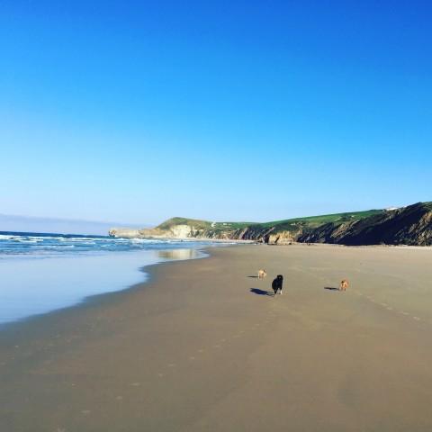 Mar Cantábrico – oder: Über die beste spontane Planänderung des vergangenen Jahres