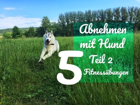 Abnehmen mit Hund  Teil 2 – 5 Fitnessübungen