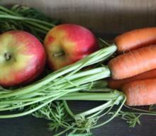 [BARF] Rezeptideen für Gemüse-Obst-Mischungen