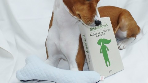 ~ Django der grüne Basenji, nachhaltig leben ~