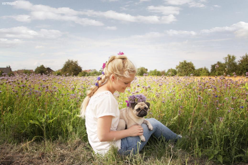 Blumen Hunde
