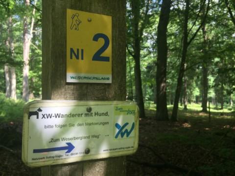 Weserbergland-Weg – Etappe 4