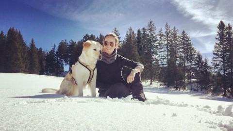 Reisen mit Hund & Kind: mit ferienwohnungen.de im Tannheimer Tal, Österreich & Foto Challenge