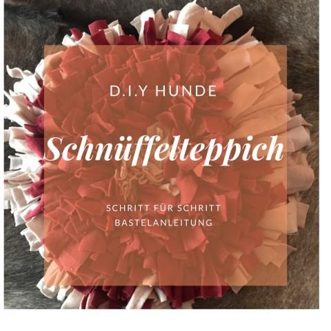 D.I.Y Schnüffelteppich