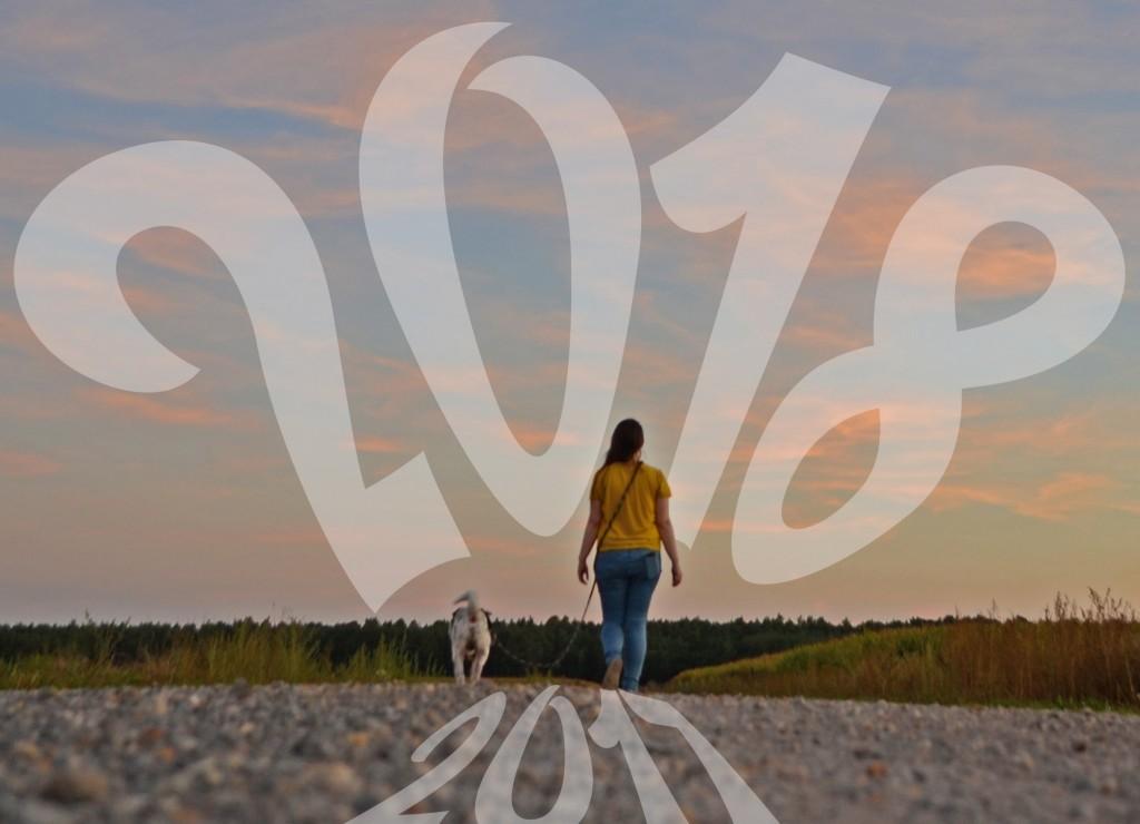 Jahresvorschau 2018 Rabaukenbande Shar Pei Hund Hunde Blog Katze Kater Ziele 2017 Blogger Deutschland Vertrauen Gesundheit Fotografie