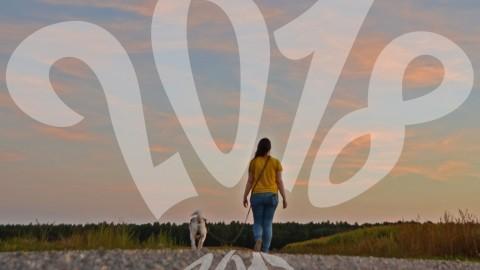 Jahresvorschau 2018: 4 Ziele, die uns reifen lassen