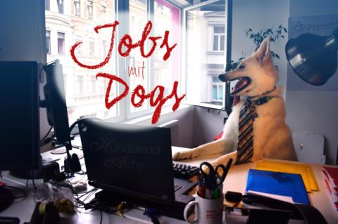 Jobs mit Dogs – Hundebuchautor