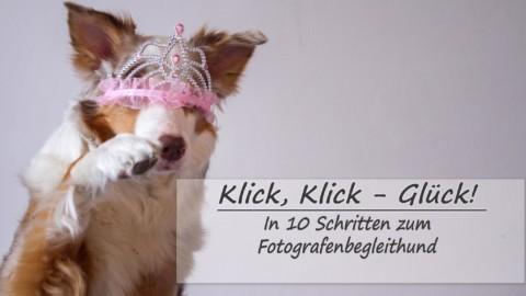 Klick, Klick – Glück. In 10 Schritten zum Fotografenbegleithund