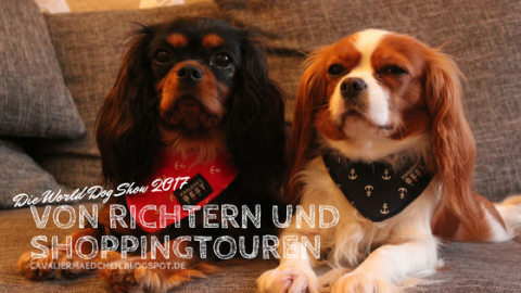 Von Richtern und Shoppingtouren – Die World Dog Show 2017