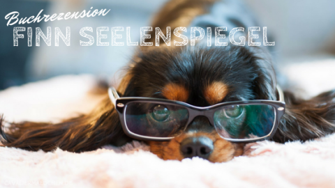 [Buchrezension] – Finn Seelenspiegel