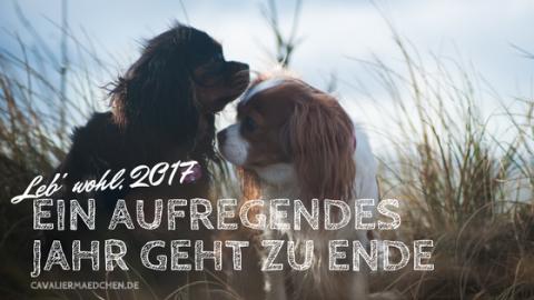 Ein aufregendes Jahr geht zu Ende – Leb' Wohl 2017