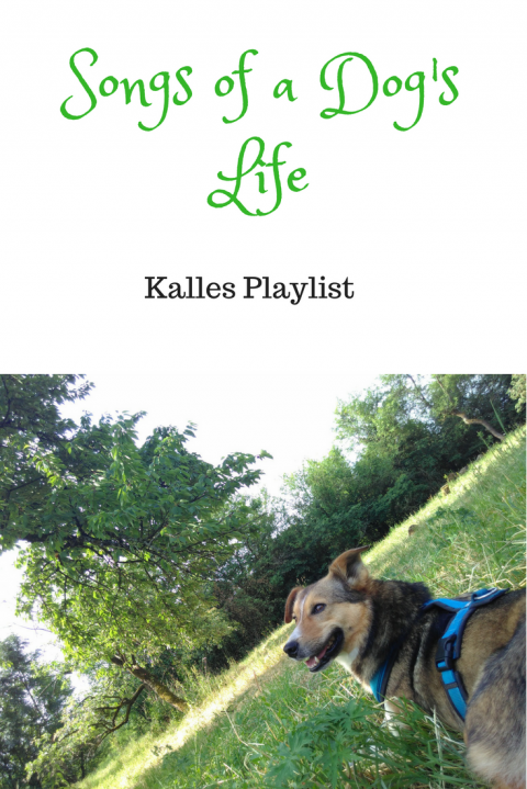 Songs of a dog's life