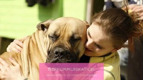 Warum ich einen Kurs in Tierkommunikation machen möchte