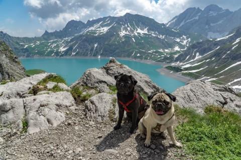 Rundwanderung um den Lünersee, Vorarlberg