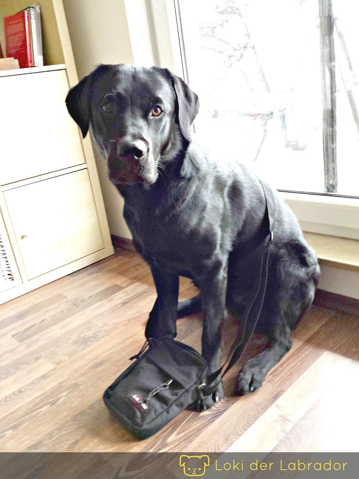Labrador Gassi Tasche