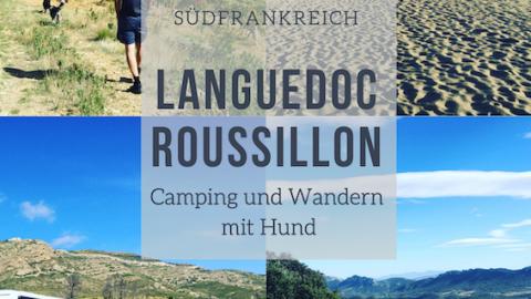 LANGUEDOC-ROUSSILLON IM HERBST – WENN HUNDE TRÄUMEN…