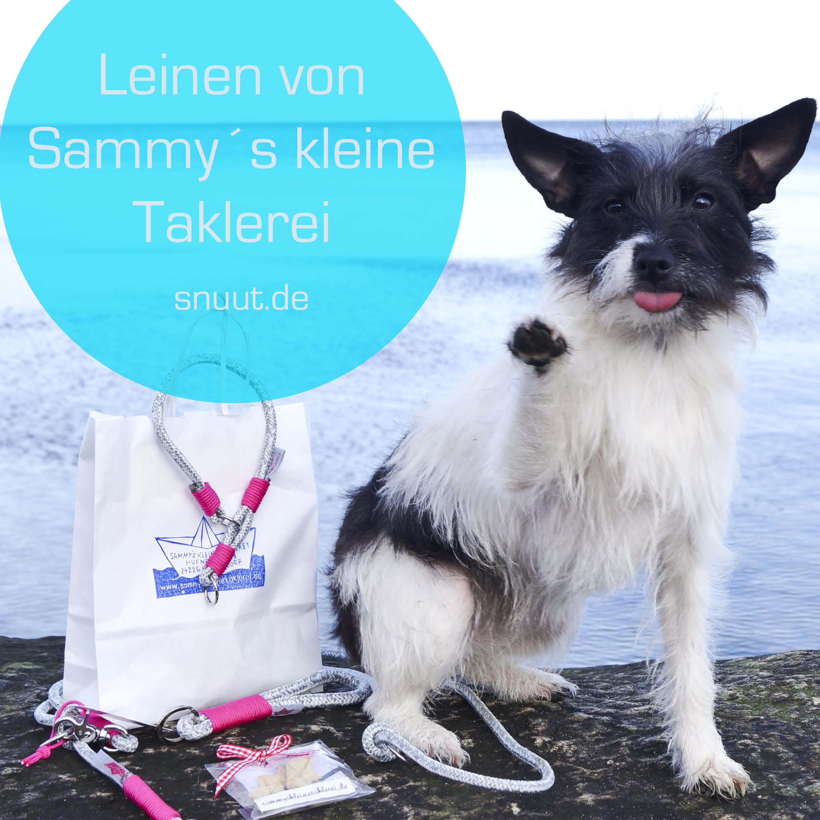 leinen-von-sammy Taklerei