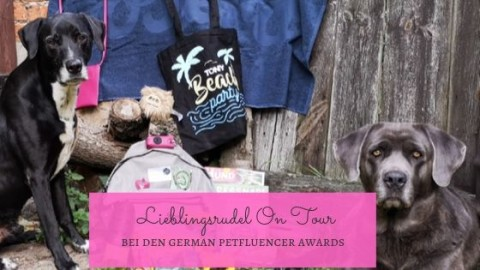 Lieblingsrudel On Tour – Beachparty der German Petfluencer Awards 2019