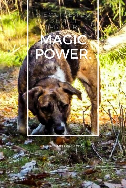 Magic Power – die Welt verändern, jeden Tag ein wenig