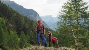 Meraner Höhenweg mit Hund