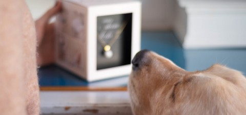 Personalisierter Schmuck aus Hundehaaren