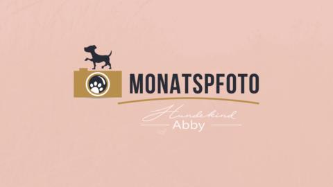 MONATSPFOTO FEBRUAR: STREETSTYLE